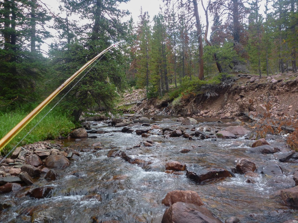 Overloaded on the uinta highline trail mediocre for Rock creek fishing