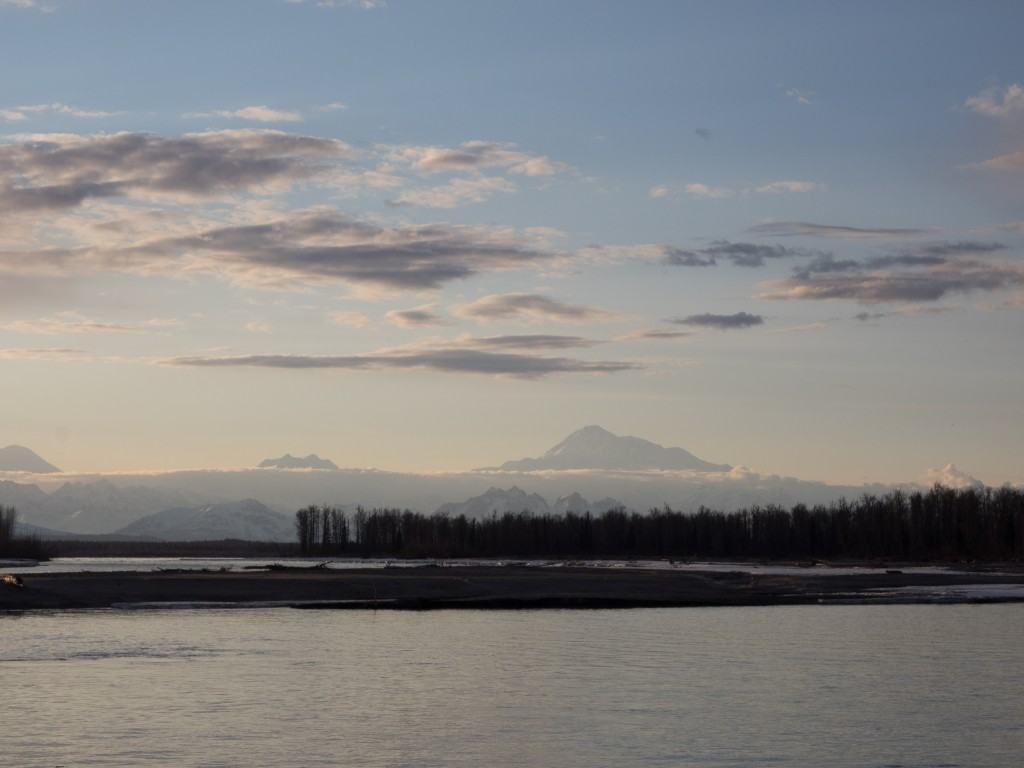 View of Denali from Talkeetna