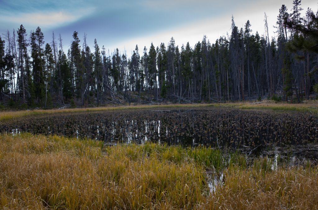 High Uintas Pond