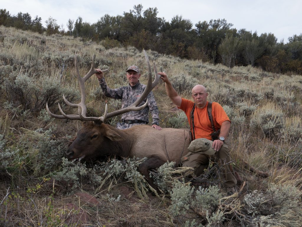Elk Down! Now the hard work of meat hauling is about to begin